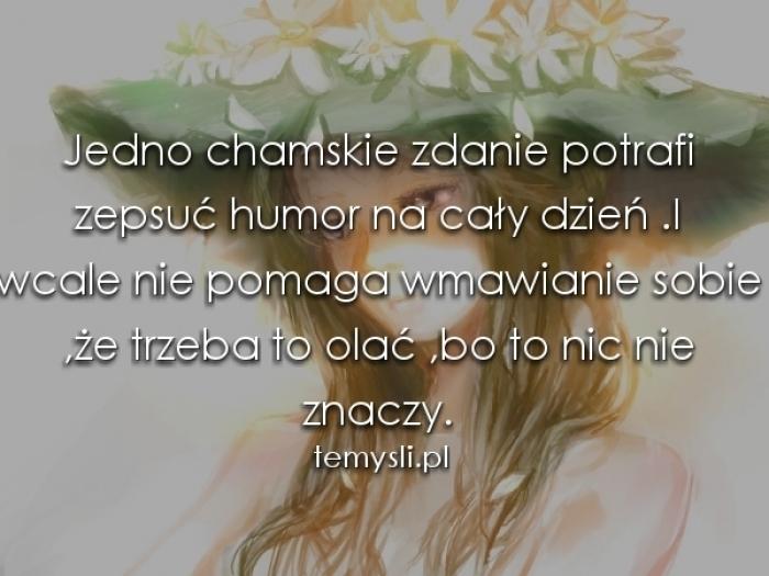 Chamskie Zdanie