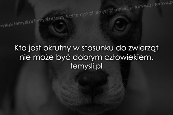 Kto jest okrutny w stosunku do zwierząt..