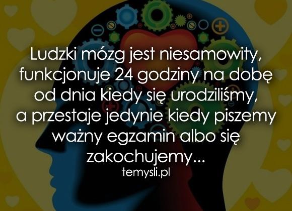 Ludzki mózg jest niesamowity, funkcjonuje...