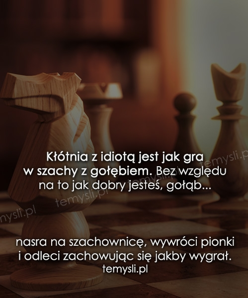 Kłótnia z idiotą jest jak gra w szachy z gołębiem...