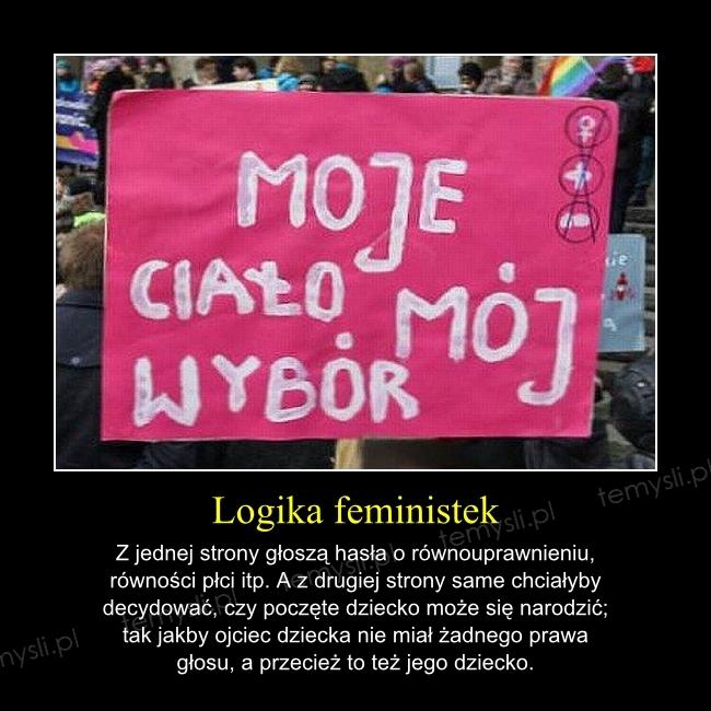 Logika feministek