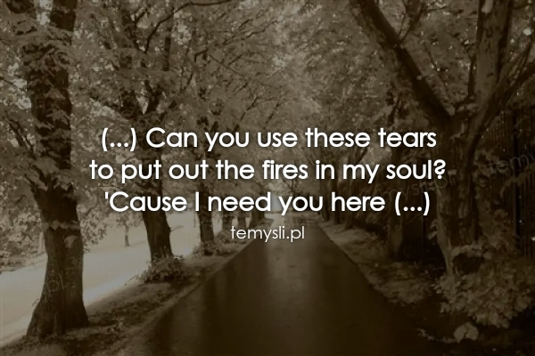(...) Can you use these tears  to put out the fires in my so