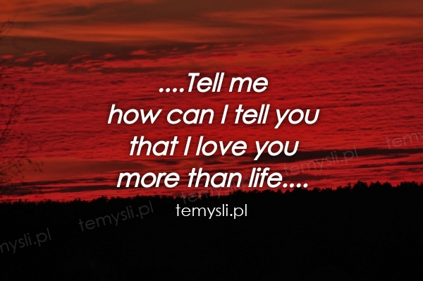 ....Tell me  how can I tell you that I love you  more than l