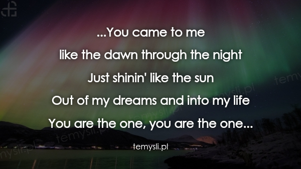...You came to me  like the dawn through the night  Just shi