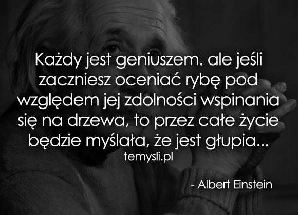 Każdy jest geniuszem...
