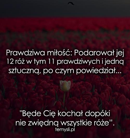 Prawdziwa miłość: Podarował jej 12 róż w tym