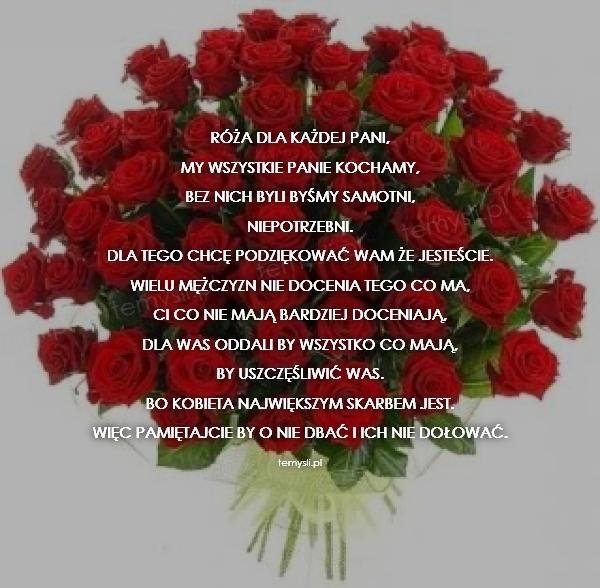 Róża dla każdej pani,