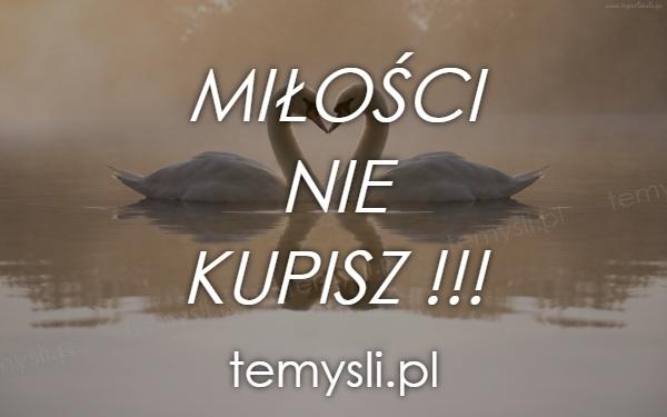 MIŁOŚCI  NIE  KUPISZ !!!