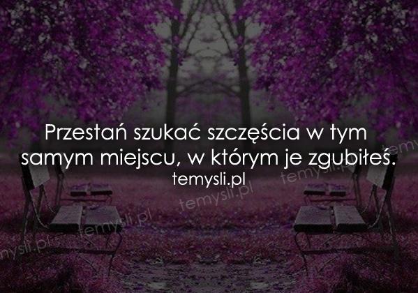 Przestań szukać szczęścia w tym samym miejscu, w którym je zgubiłeś.