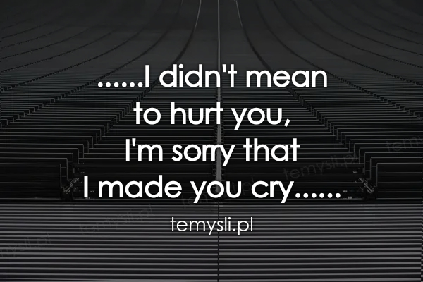 ......I didn't mean  to hurt you,  I'm sorry that  I made yo