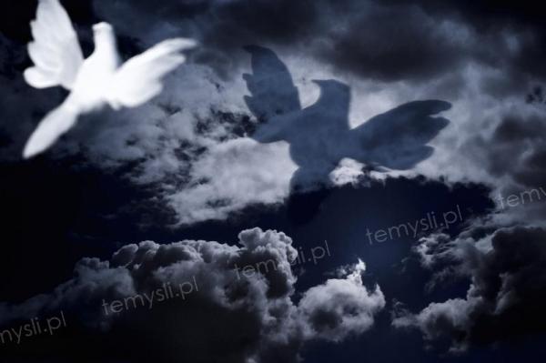 Dobro i Zło... tak trudno odróżnić w dzisiejszych czasach co jest prawdą a co fałszem......